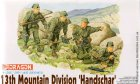 Солдаты German 13th Mountain Division
